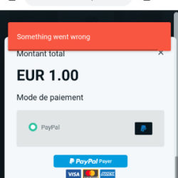 erreur bug don z event something went wrong paypal